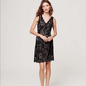 LOFT sleeveless lace dress Never Been Worn